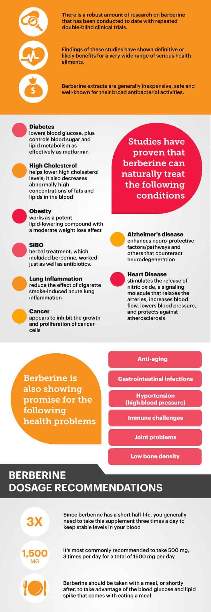 Benefits of berberine - Dr. Axe