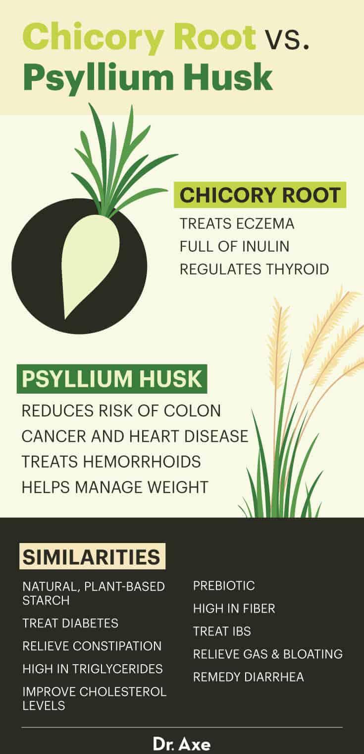 Chicory root vs. psyllium husk - Dr. Axe