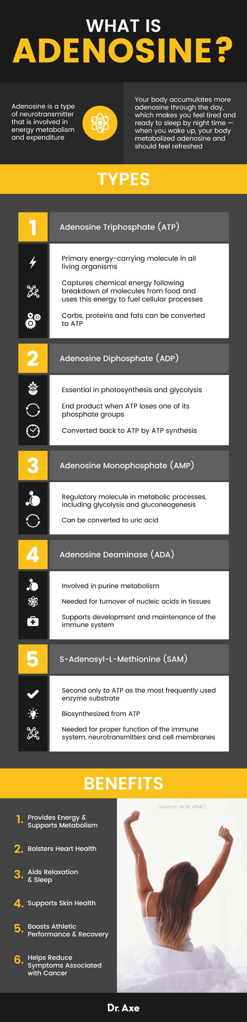 Adenosine - Dr. Axe