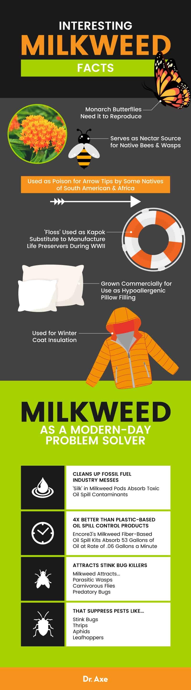 Milkweed - Dr. Axe