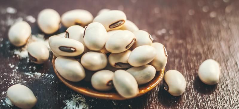 Mucuna pruriens or velvet bean - Dr. Axe
