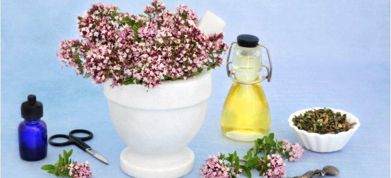 Anti-inflammatory herbs - Dr. Axe